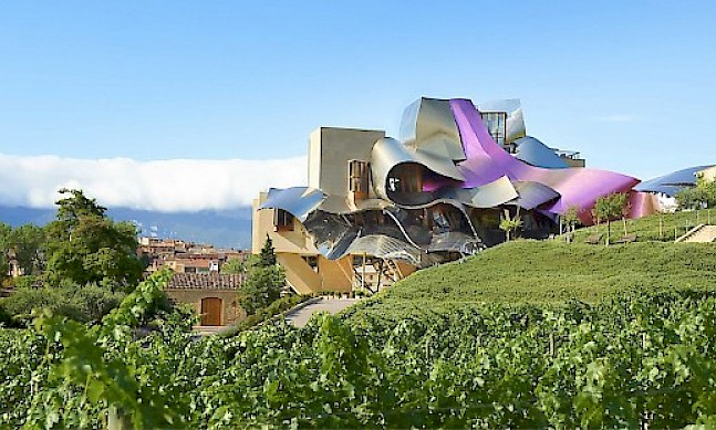 Interview with Alejandro Aznar, chairman of Marques de Riscal