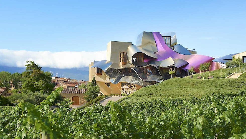 Raising The Basque Country S Wine Making Profile Basque Country